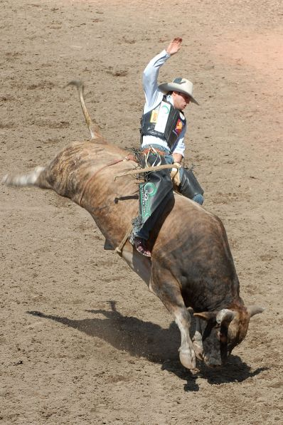 800px-Bull-Riding2-Szmurlo